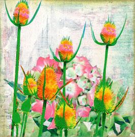 Blumen 0608