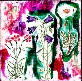 Blumen 0623