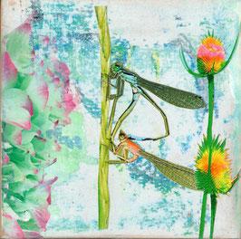 Blumen 0607