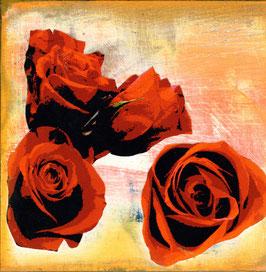 Blumen 0635 Rose