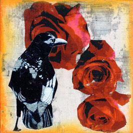 Blumen 0636 Rabe