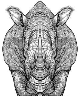 Kunstdruck Nashorn