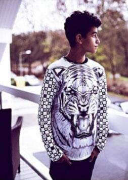 Designer Sweatshirt Tiger/Panther