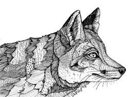Kunstdruck Fuchs