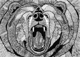 Kunstdruck Grizzly