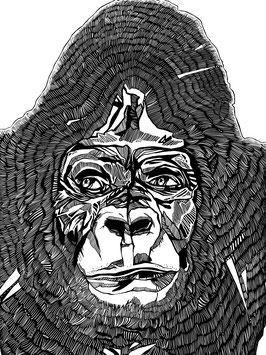 Kunstdruck Gorilla
