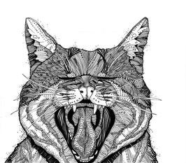 Kunstdruck Katze