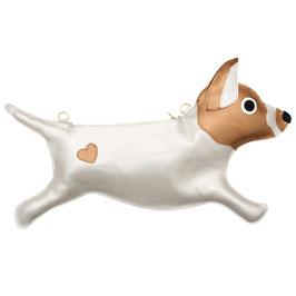 Jack Russel Terrier 2