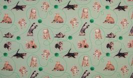 Katzen mint - Baumwolljersey Digitaldruck