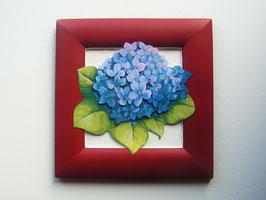 Hortensie 21 x 21cm, rot-blau