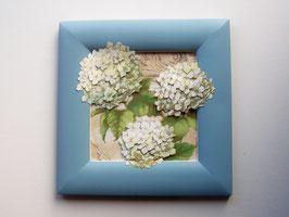 Hortensie 21 x 21cm, hellblau-weiß