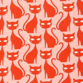 Cloud9 Fabrics / A Walk Remembered / Orange Tabby Cat / Bio-Cordstoff