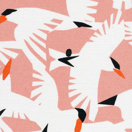 Cloud9 Fabrics / Wildlife / Vanilla Sky / Canvas