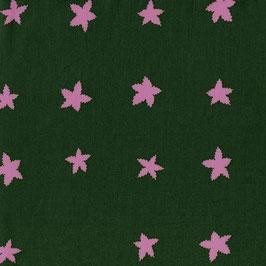 Cotton+Steel / Mesa / Stars / Evergreen