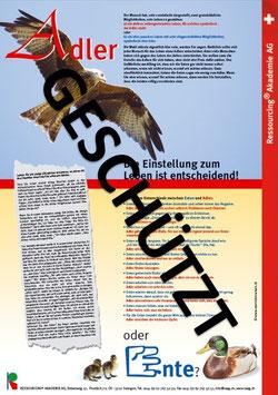 "Plakat ""Adler oder Ente"""