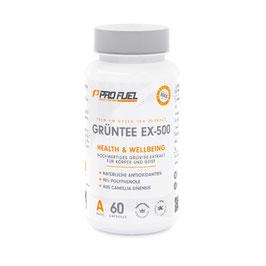 Grüntee EX-500 (Grüntee Extrakt)