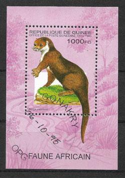 GUINEA Block 495 gestempelt