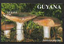 GUYANA Block 142 gestempelt