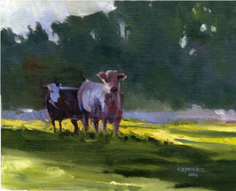 No. 138 - Two Cows