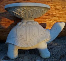 Marmorschildkröte - H: 60 cm