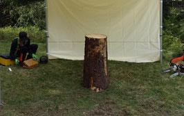Baumstumpfgestaltungen