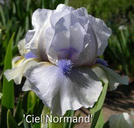 'Ciel Normand'