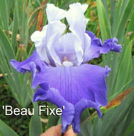'Beau Fixe'