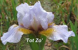 'Tot Zo'