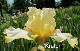 'Kraton'