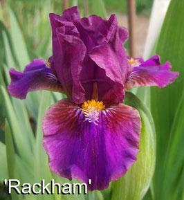 'Rackham'