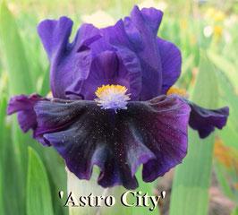 'Astro City'