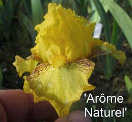 'Arôme Naturel'