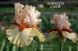 'Tobacco Chew'