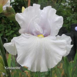 'Kimberlite'