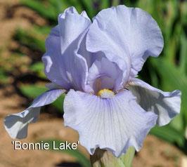 'Bonnie Lake'