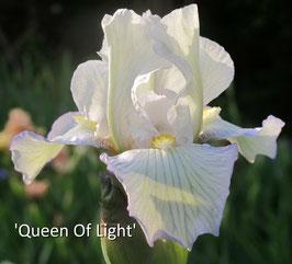 'Queen Of Light'