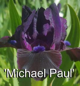 'Michael Paul'