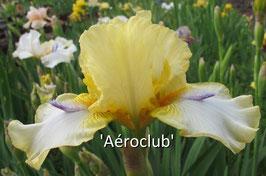 'Aéroclub'