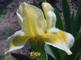 'Eitje'
