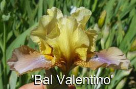 'Bal Valentino'