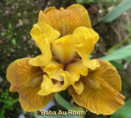 'Baba Au Rhum'