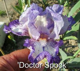 'Doctor Spock'