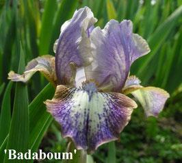 'Badaboum'
