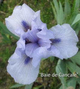 'Baie De Cancale'
