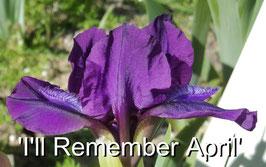 'I'll Remember April'