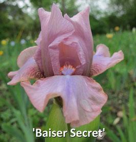 'Baiser Secret'