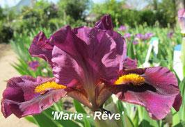 'Marie Rêve'