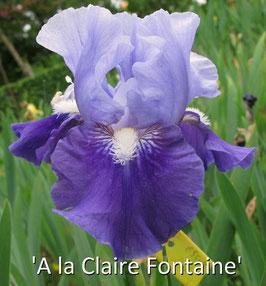 'À la Claire Fontaine'