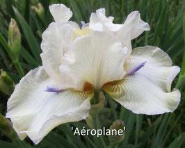 'Aéroplane'