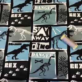 Sweat Dino-Skelette Rex